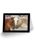 Friends Horse Greeting Card