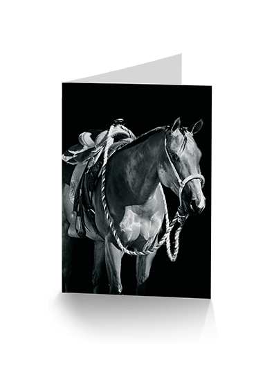Into the Light Horse Greeting Card