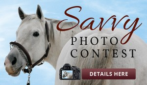 Savvy Systems Photo Contest