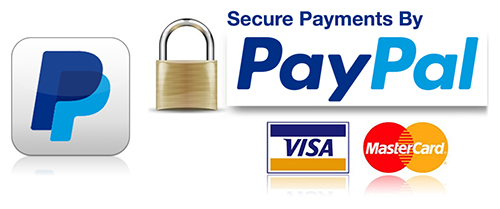 Savvy Systems accepts secure payments by PayPal