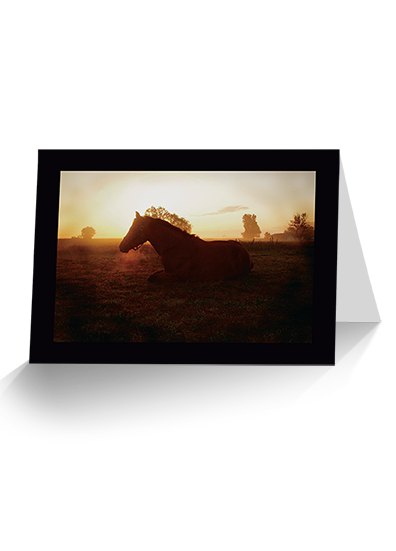 Top 'o The Morning Horse Greeting Card