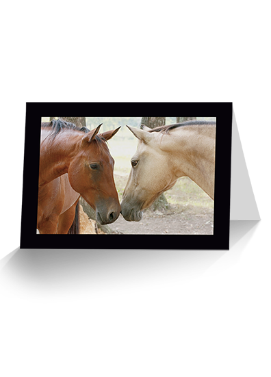 Savvy systems 2018 horse savvy day planner calendars horse friends horse greeting card reheart Gallery