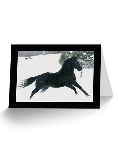 Hi Ho and Away Horse Greeting Card