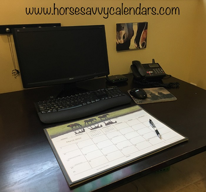 2019 Horse Savvy Ultimate Desk Calendar