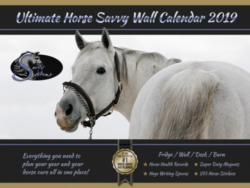 2019 Horse Savvy Ultimate Wall Calendar