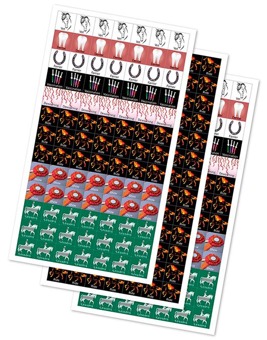 Horse Savvy Wall Calendar Veterinarian Farrier Chart