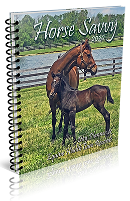 2020 Horse Savvy Day Planner