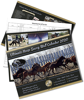 2020 Ultimate Horse Wall Calendar