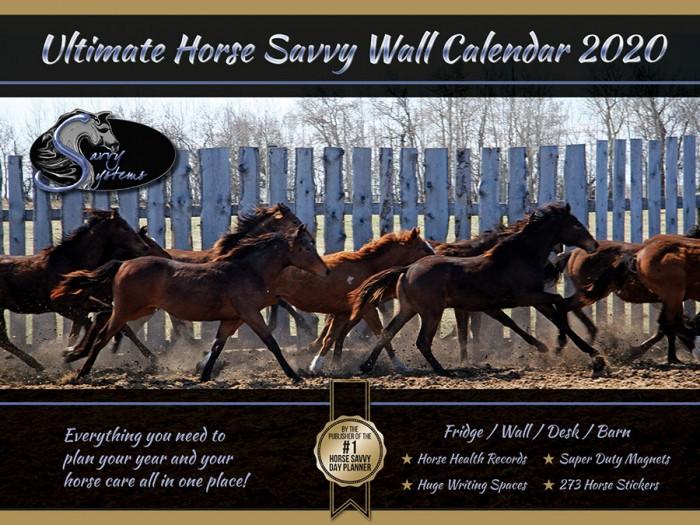 2020 Horse Savvy Ultimate Wall Calendar