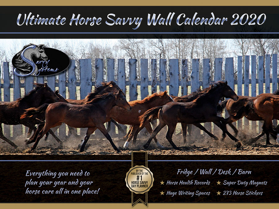 2020 Horse Savvy Ultimate Wall Calendar